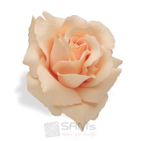 Electra Bicycle Rose Cream Lenkerblume