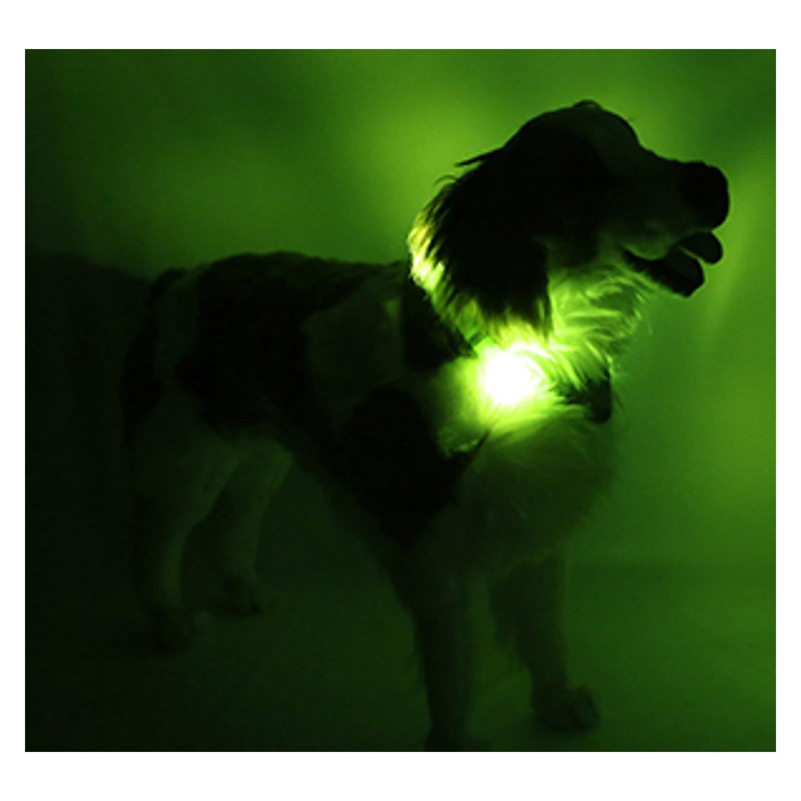 Leuchtie Plus LED Leucht LED Plus Hunde Halsband Sicherheit Licht Wasserfest Tier Hell 1dd5df